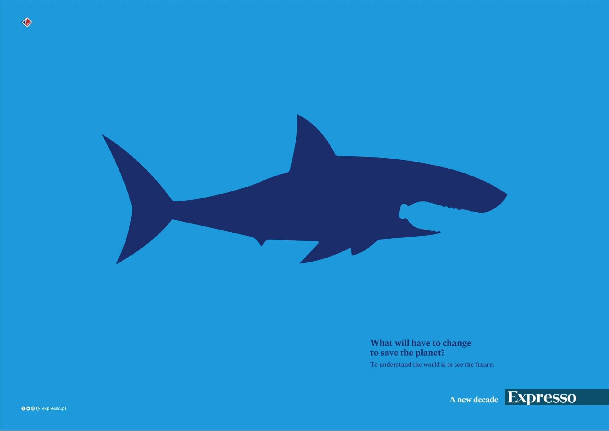 newspaper shark advertisement example