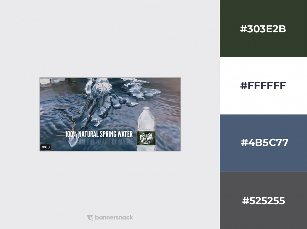 Poland Springs Twitter Design Example