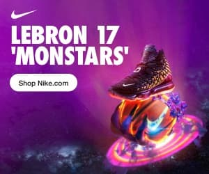 Nike Lebron Monstars Visual