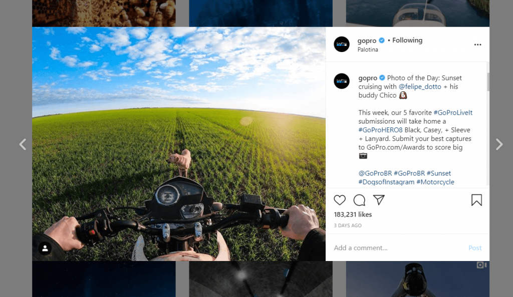 gopro brand loyalty through offers