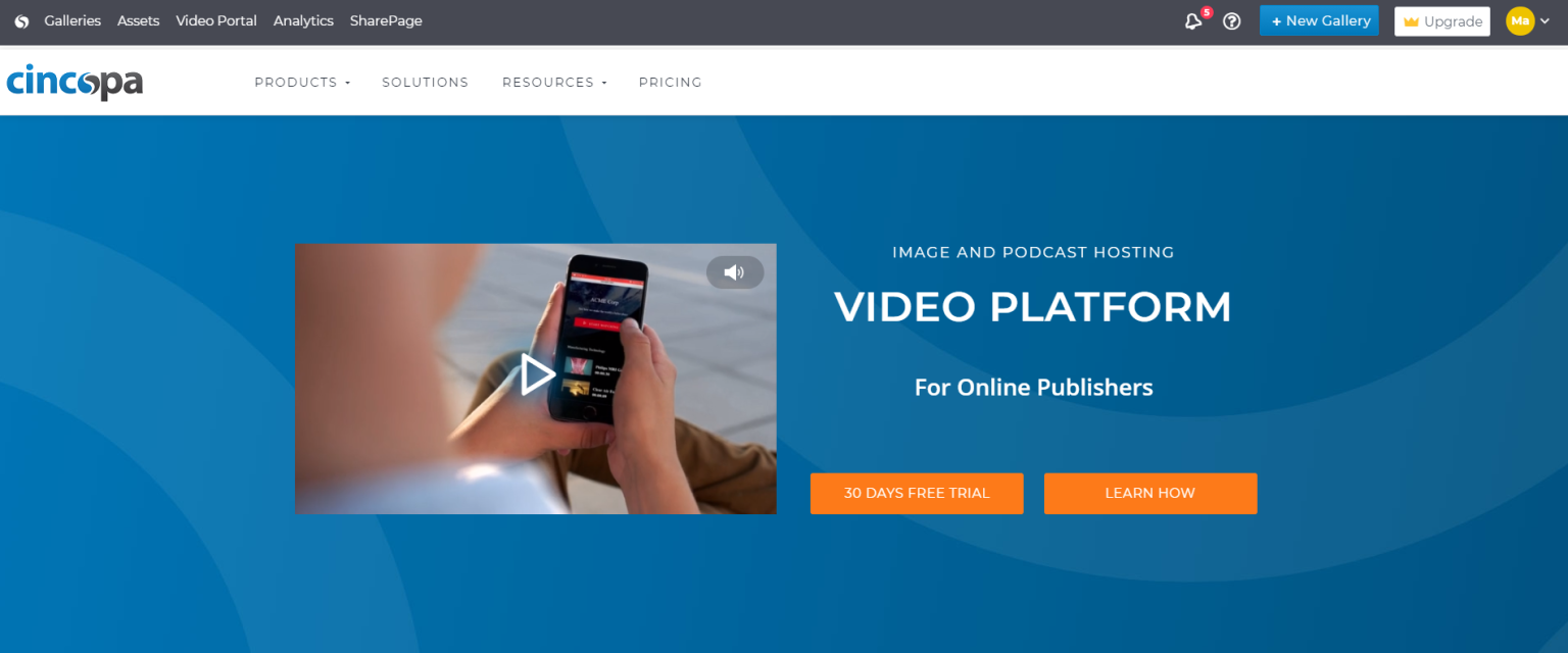 cincopa - video hosting platform