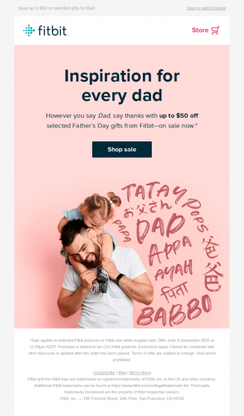 fitbit email ecommerce marketing strategy